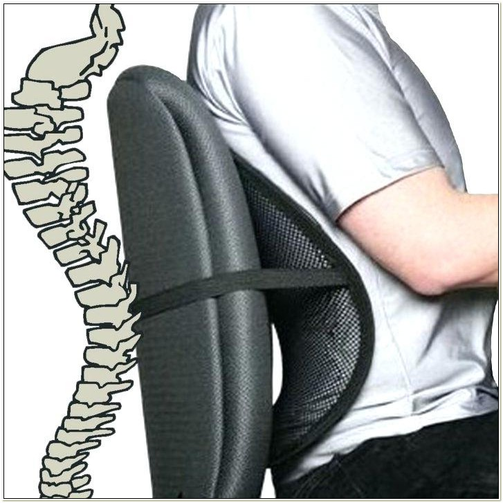 Back Support For Office Chairs Sydney