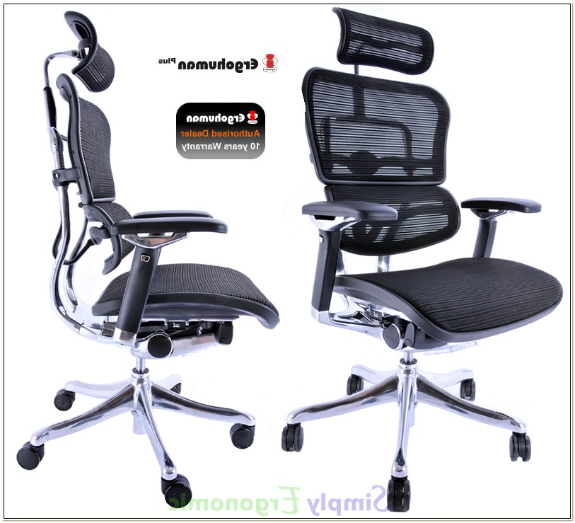 Chair Support For Sciatica