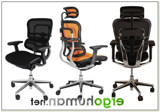 Ergohuman Mesh Ergonomic Office Chair