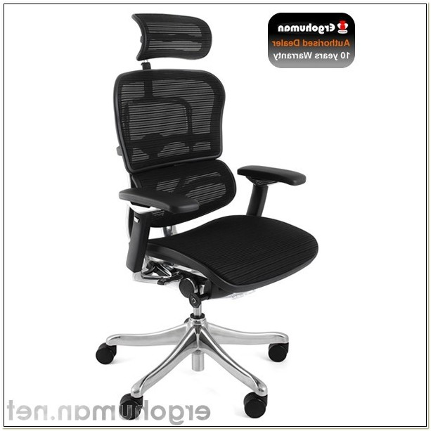 Ergohuman Plus Mesh Office Chairs With Headrest