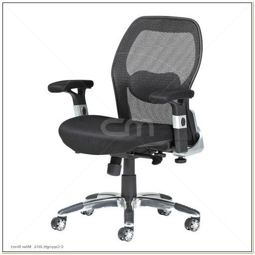 Ergonomic Task Chair Lumbar Support