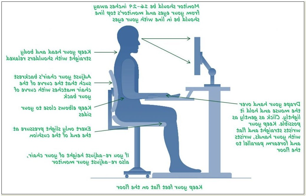 Optimal Posture Office Chair