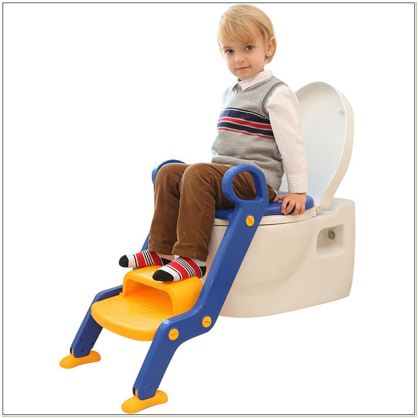 Potty Chairs For Big Toddlers
