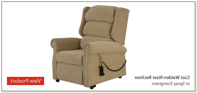 Rise And Recline Chairs For The Elderly
