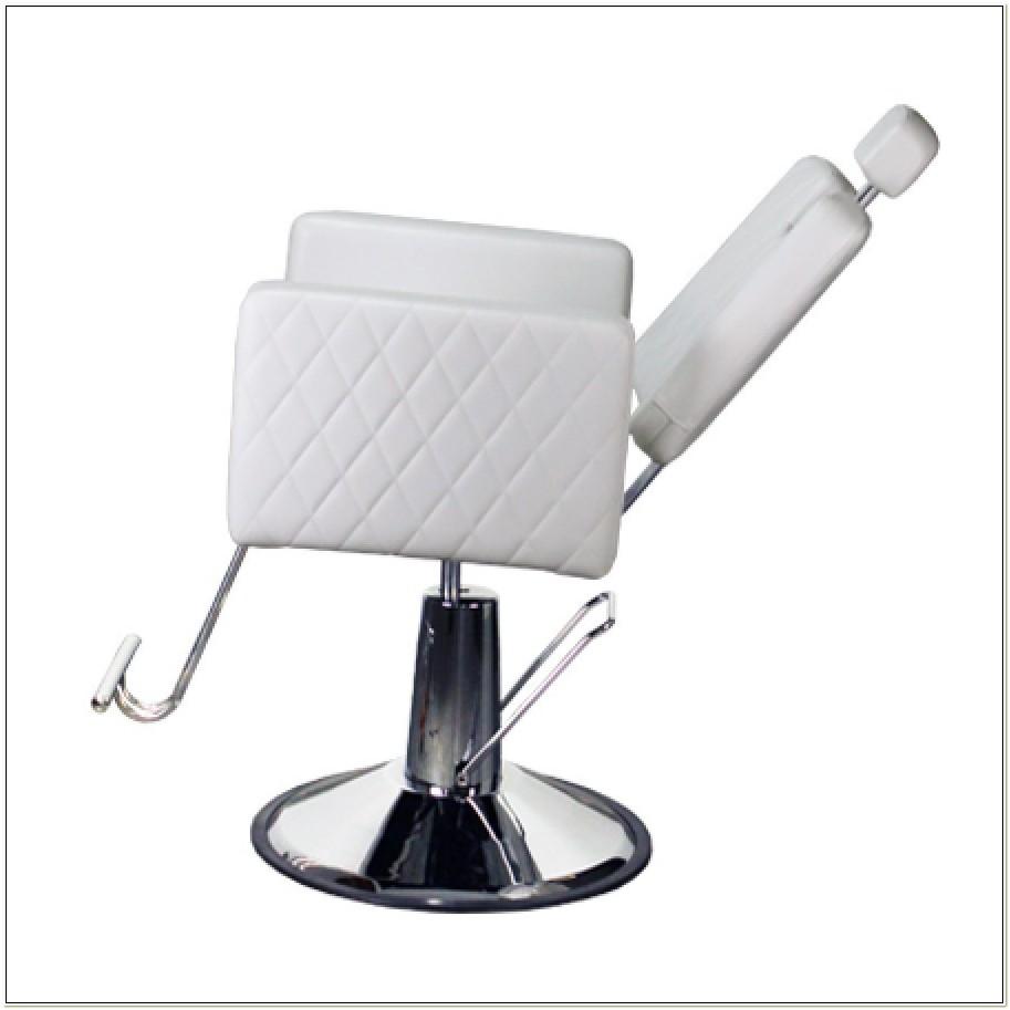 White All Purpose Salon Chair