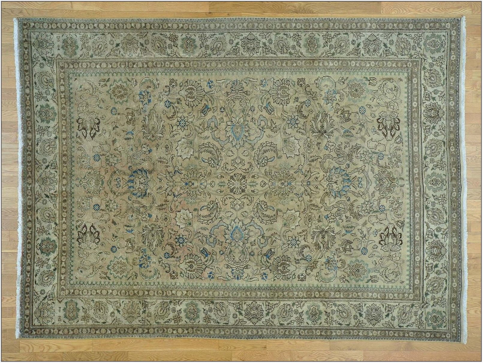 8 X 11 Living Room Rugs
