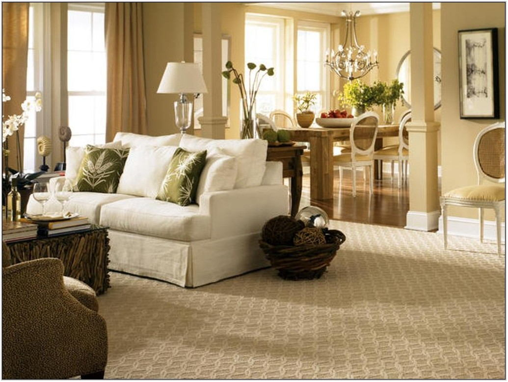 Best Carpet Color For Living Room
