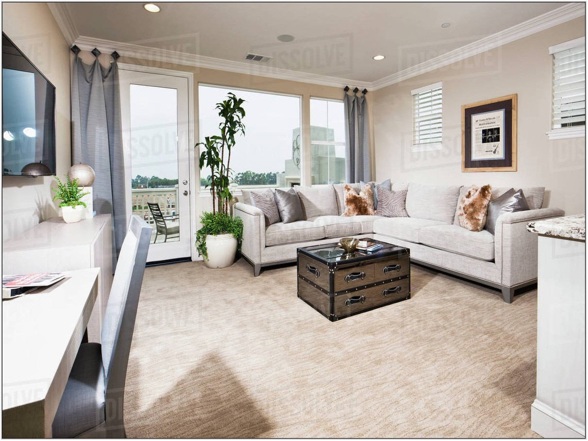 Contemporary Living Room Sectional