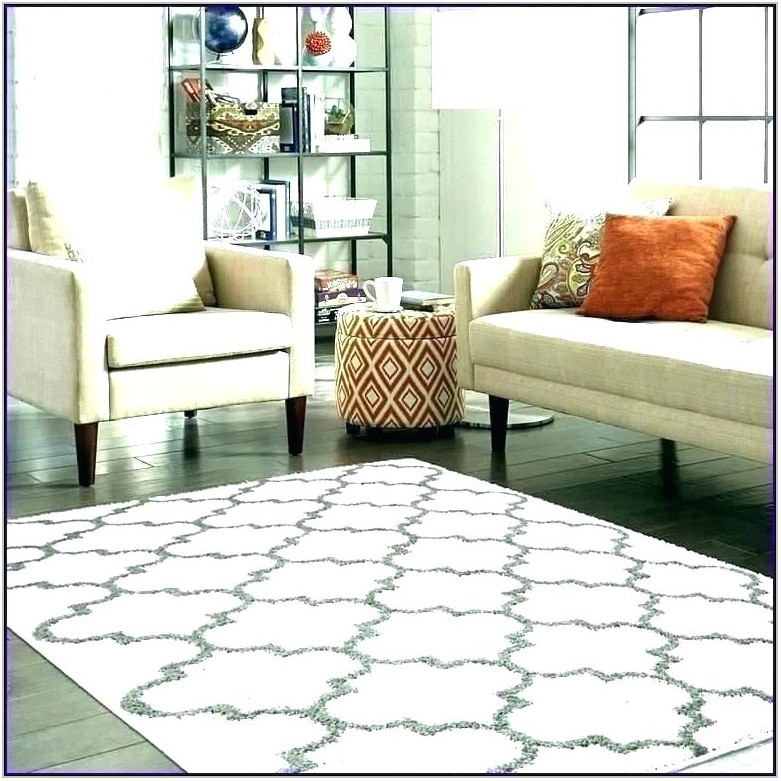 Cute Area Rugs For Living Room