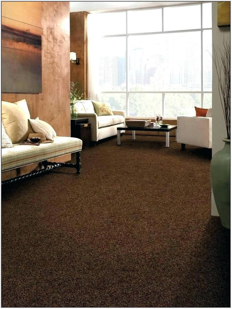 Dark Brown Carpet Living Room Ideas