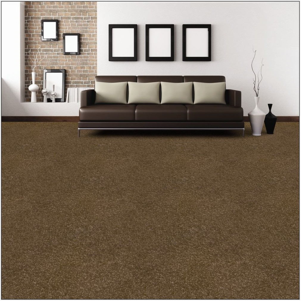 Dark Brown Carpet Living Room