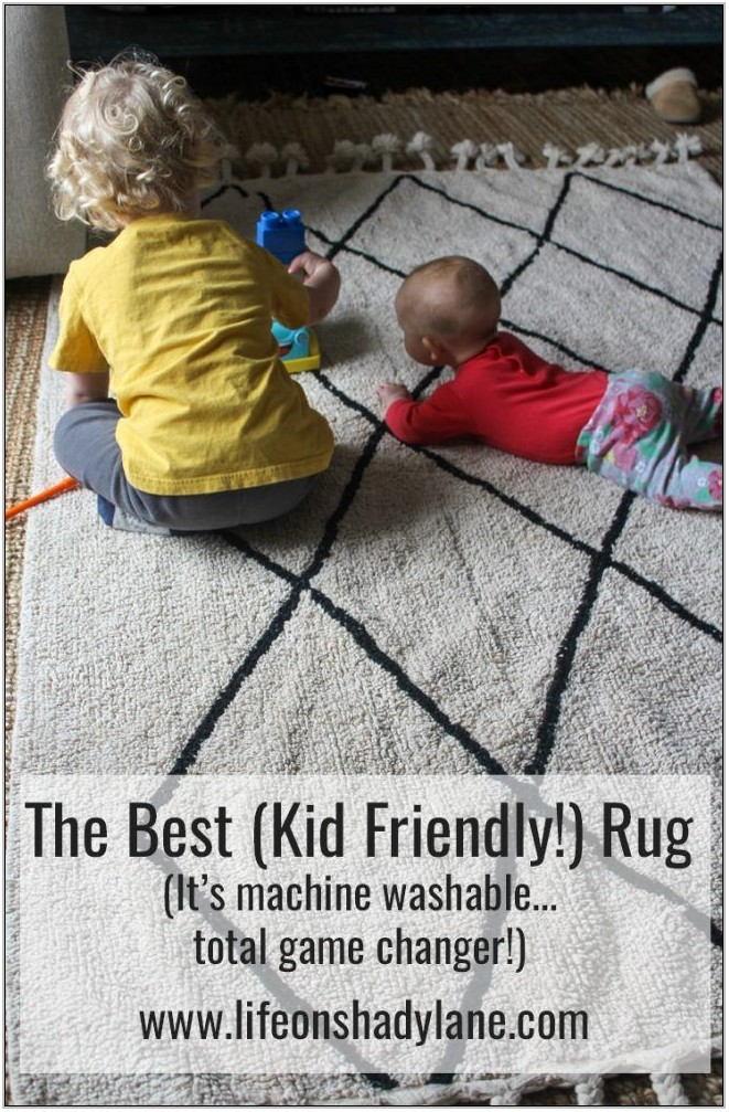 Kid Friendly Living Room Rugs