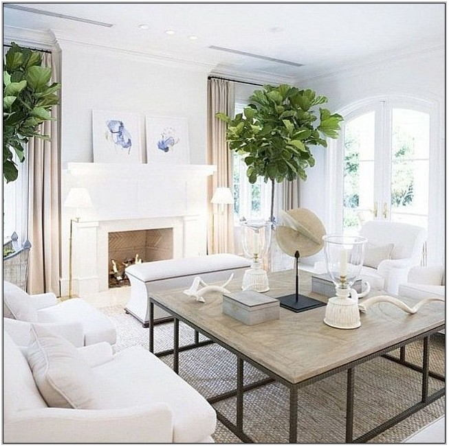 Light Airy Living Rooms