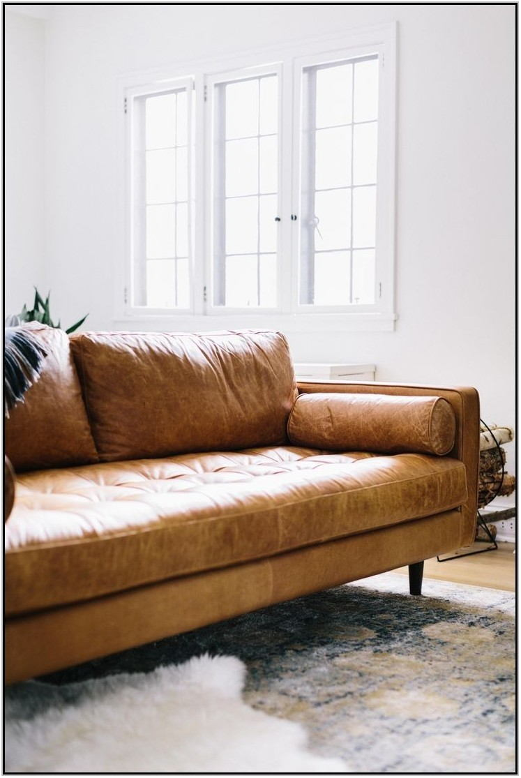 Light Brown Leather Couch Living Room