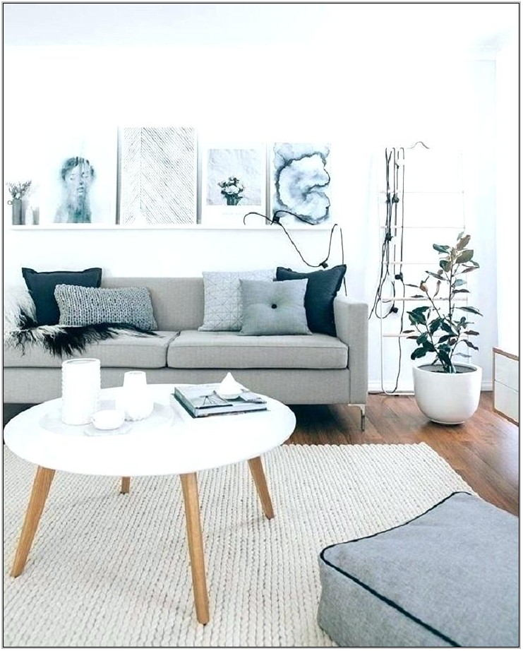 Light Grey Couch Living Room
