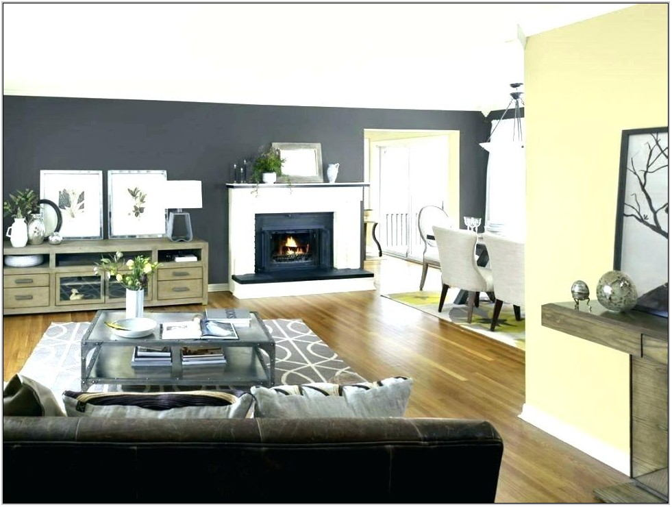 Living Room Colors With Gray Couch