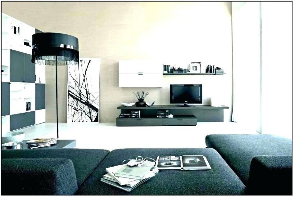 Living Room Decor For Guys