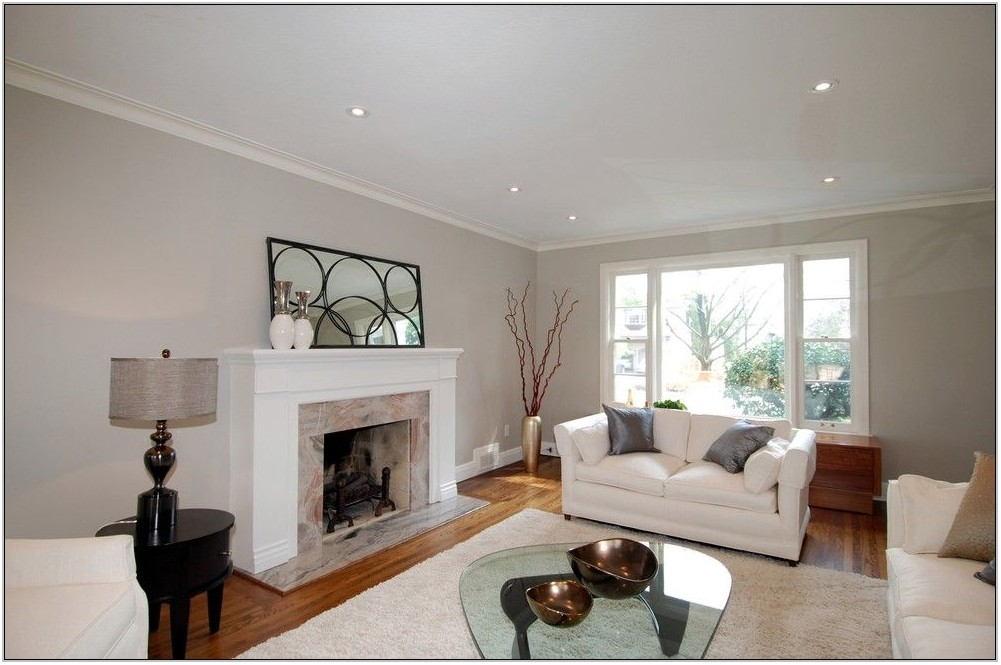 Living Room Neutral Paint Ideas