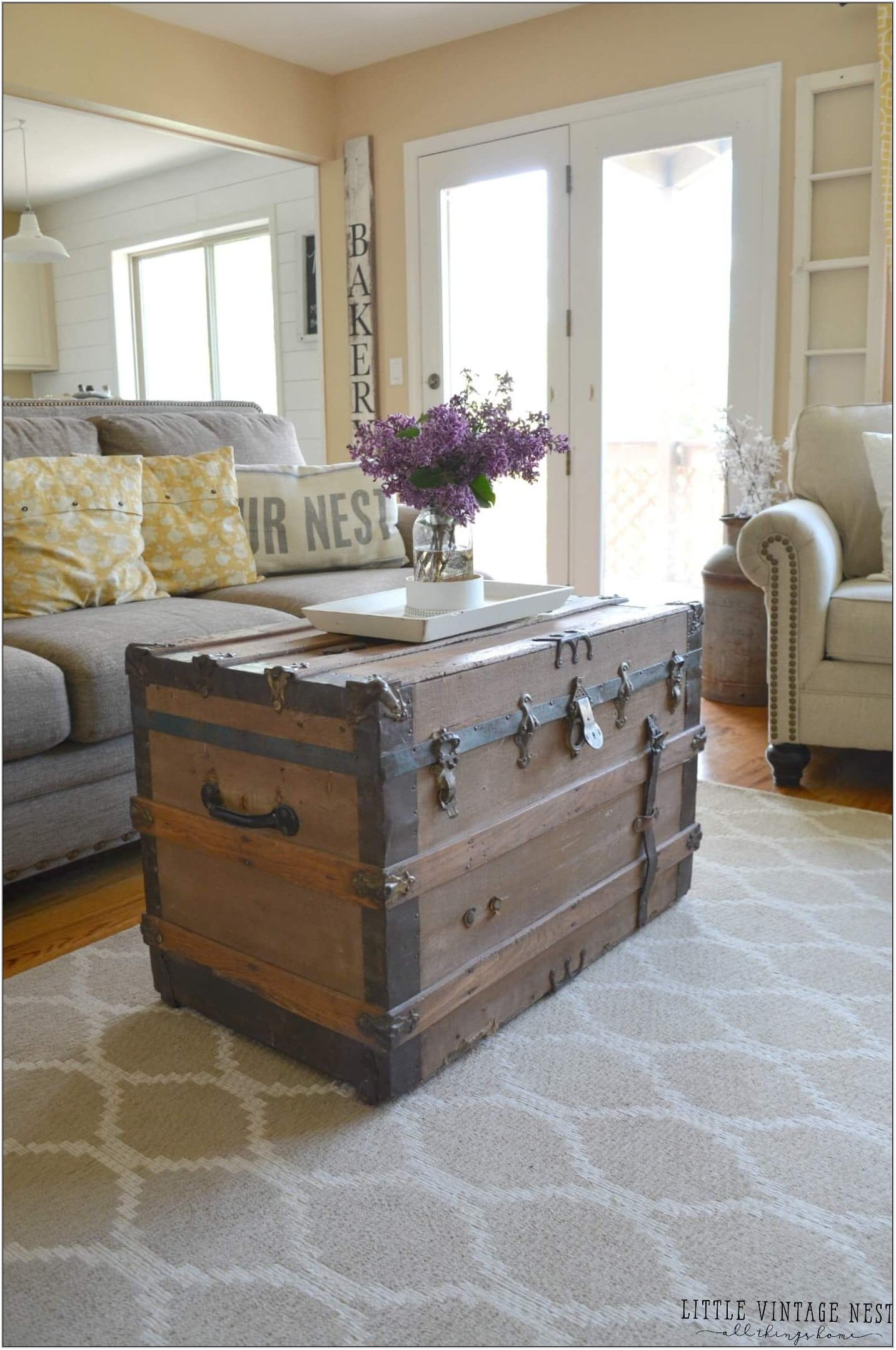 Living Room Trunk Coffee Table