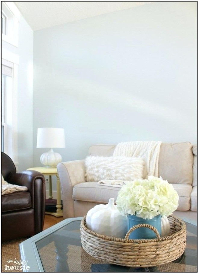 Paint Color Choices For Living Rooms