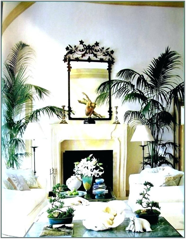 Palm Tree Themed Living Room