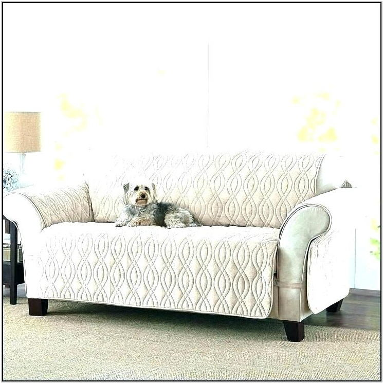 Pet Proof Living Room Furniture