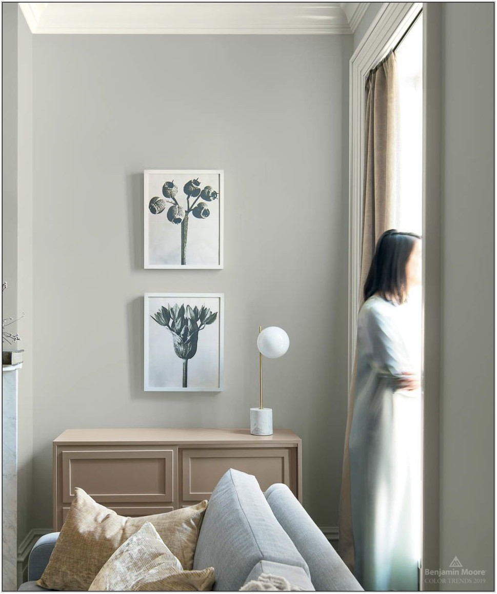 Popular Colors For Living Rooms 2019