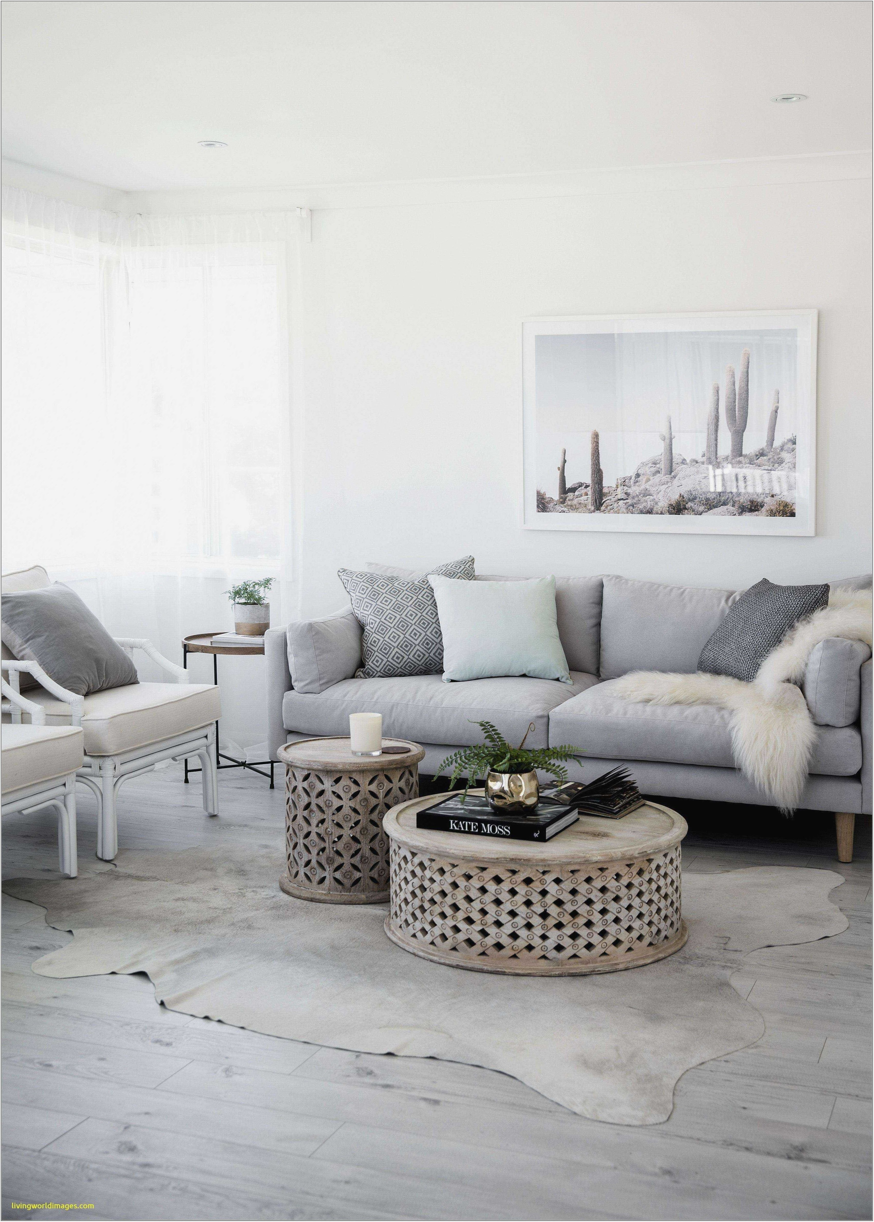 Primitive Colors For Living Room