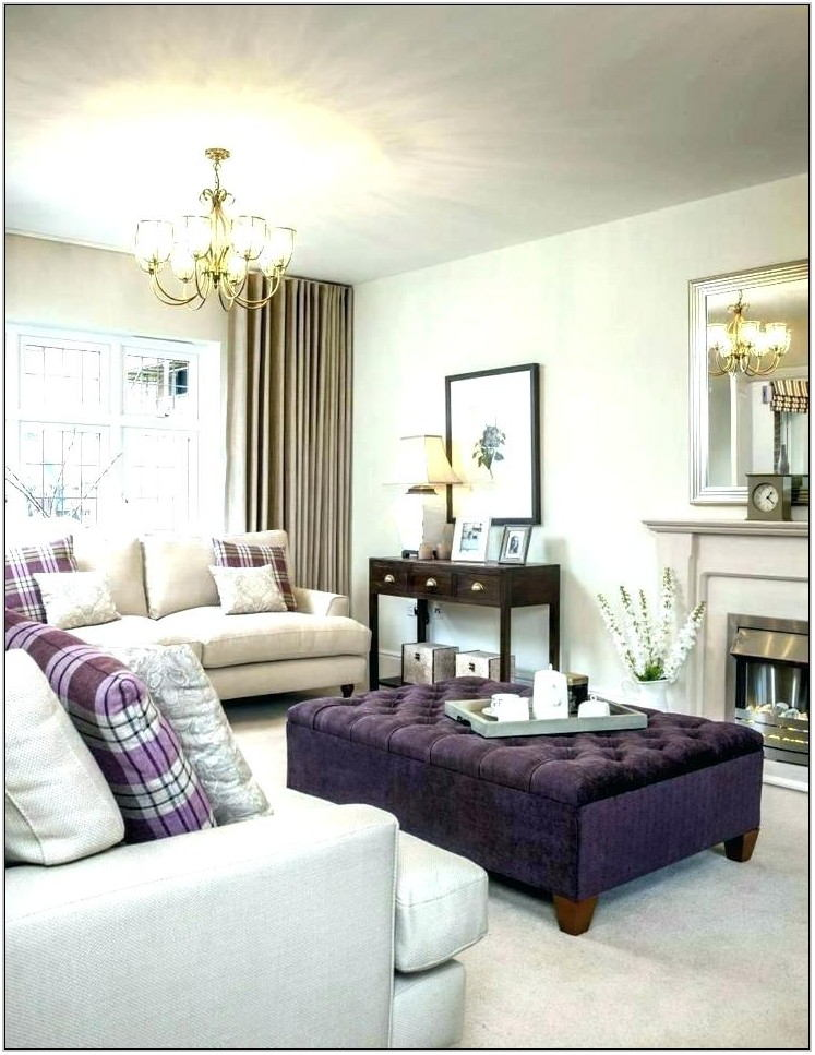 Purple Couch Living Room Ideas