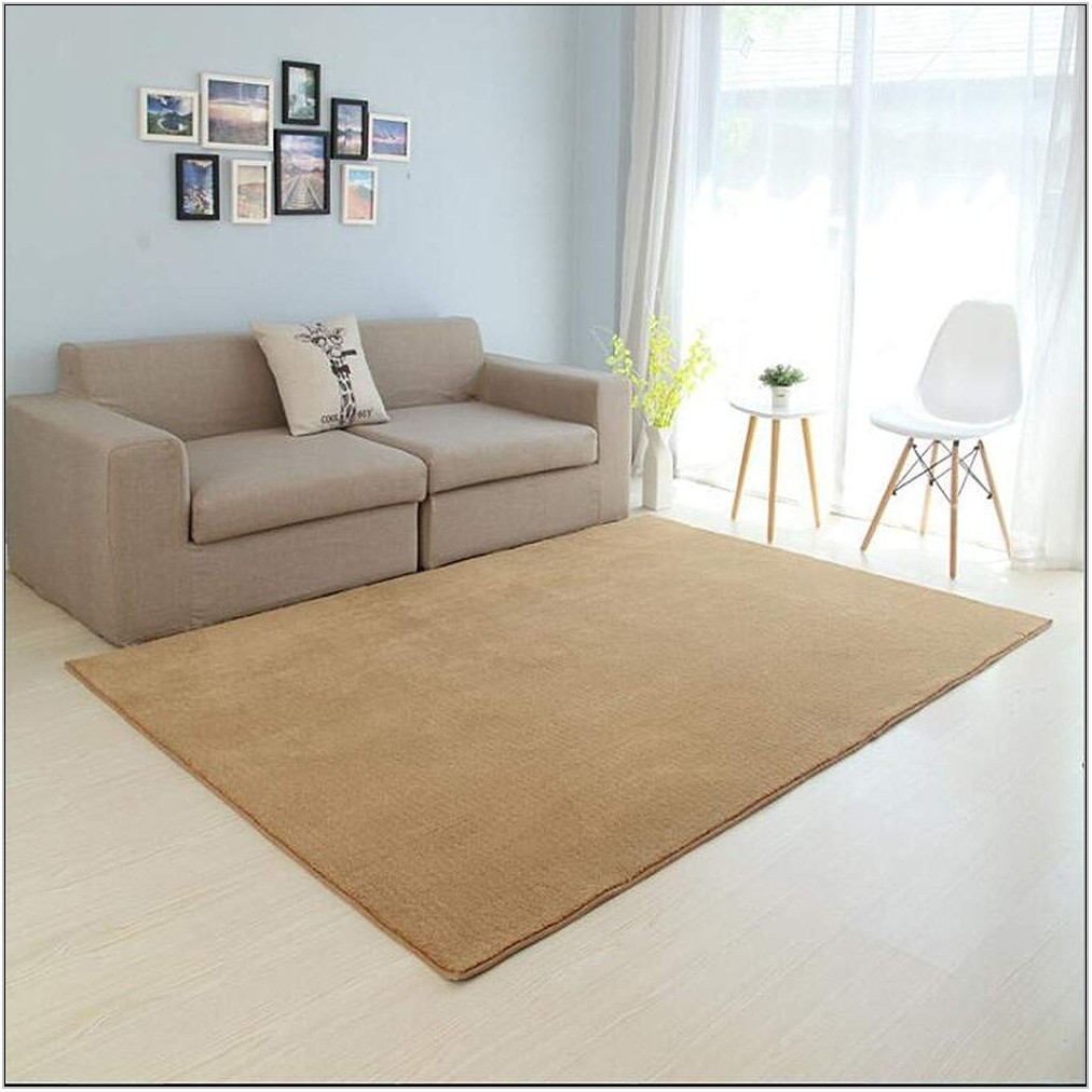 Shag Area Rugs For Living Room