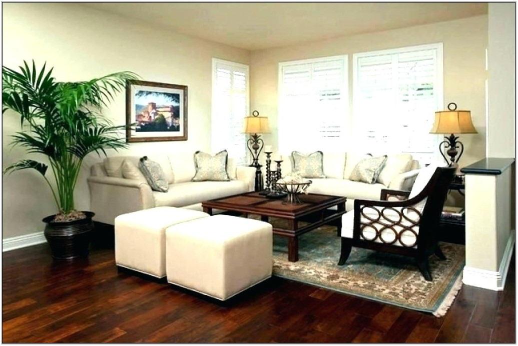 Tropical Living Room Decor
