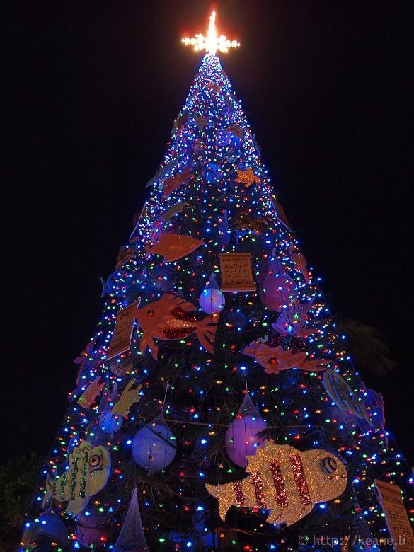 Honolulu City Lights - Christmas 2012 - Christmas Tree