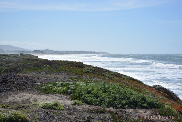 Dunes Beach in Half Moon Bay