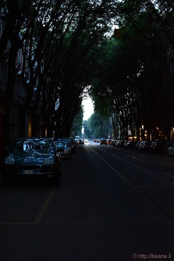 Tree-lined Street in Milan