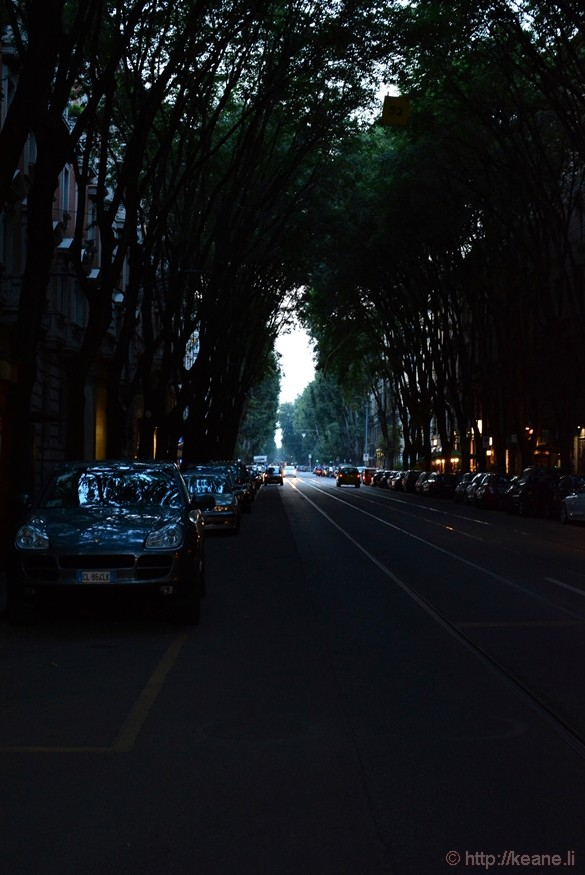 Tree-lined Street in Milan