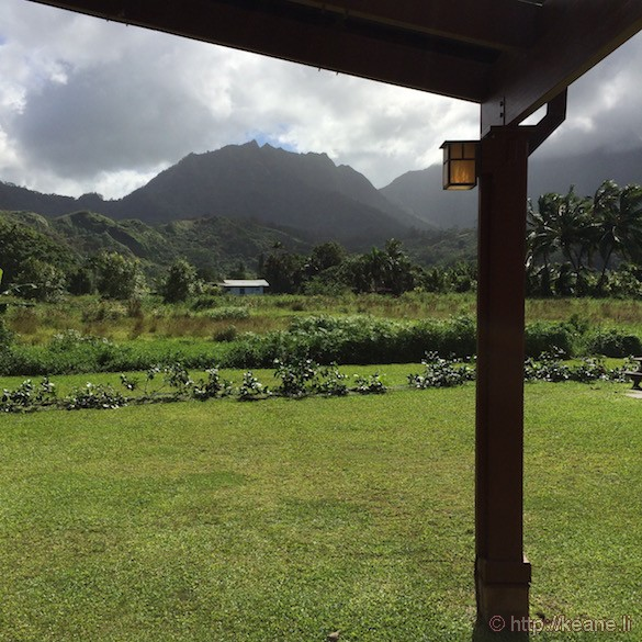 Kauai - Field in Hanalei
