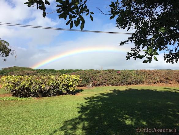 Kauai - Rainbow Over the Kauai Coffee Company Plantation