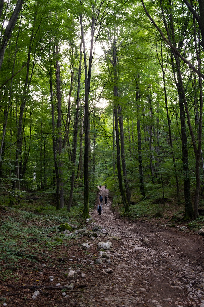 Hiking Path to Ojstrica and Mala Osojnica from Lake Bled
