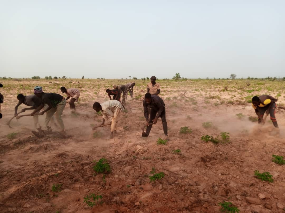 Governor Bagudu Mobilizes Farmers for Dry Season farming