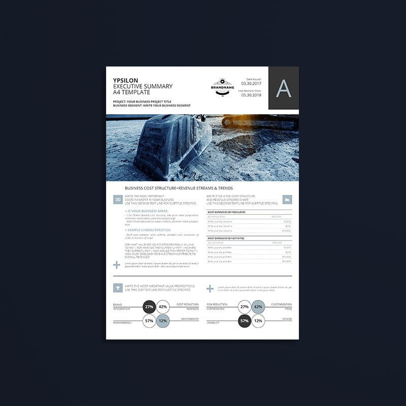 Ypsilon Executive Summary A4 Template