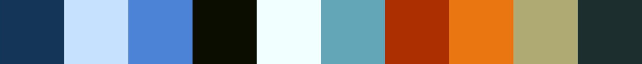 145 Pielaza Color Palette