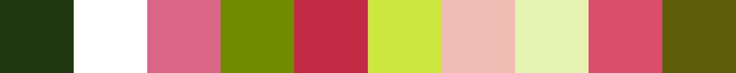 488 Kodeloca Color Palette
