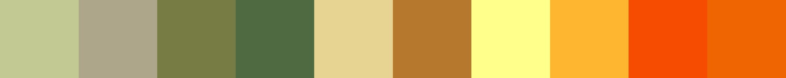 554 Pemba Color Palette