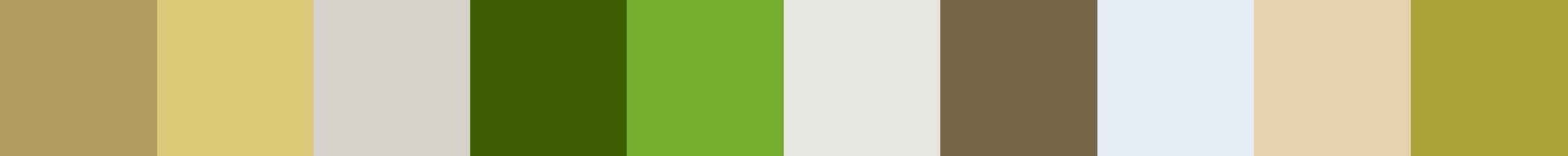 650 Ruhamia Color Palette