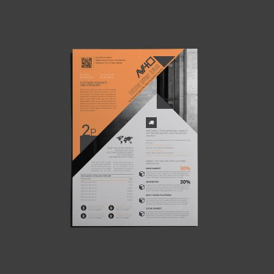 AViTO Executive Summary Template
