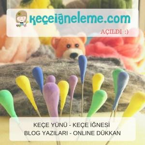 keceigneleme.com açıldı :)