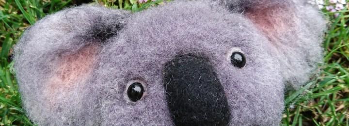 Koala Kafası :)