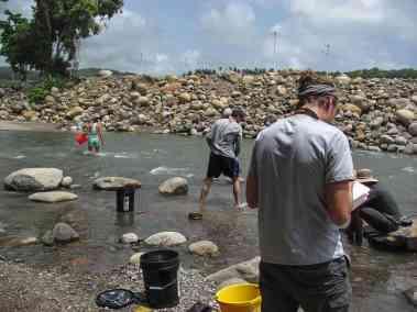 Dominica Sampling 0646