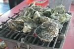 【台湾澎湖旅行】海上レストラン「海洋牧場」で牡蠣食べ放題!