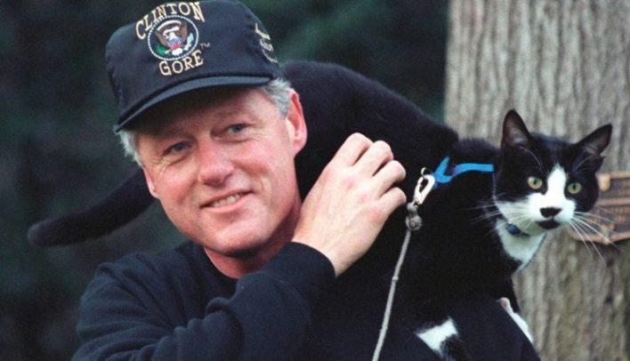 bill-clinton-tuxedo-kedi-socks